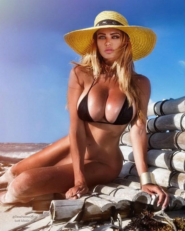 Dana Hamm nude photos 13